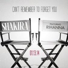 Shakira-Rihanna-anunciaron-redes-sociales LNCIMA20140106 0180 1